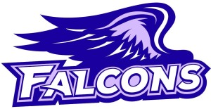 Falcons Logo klein